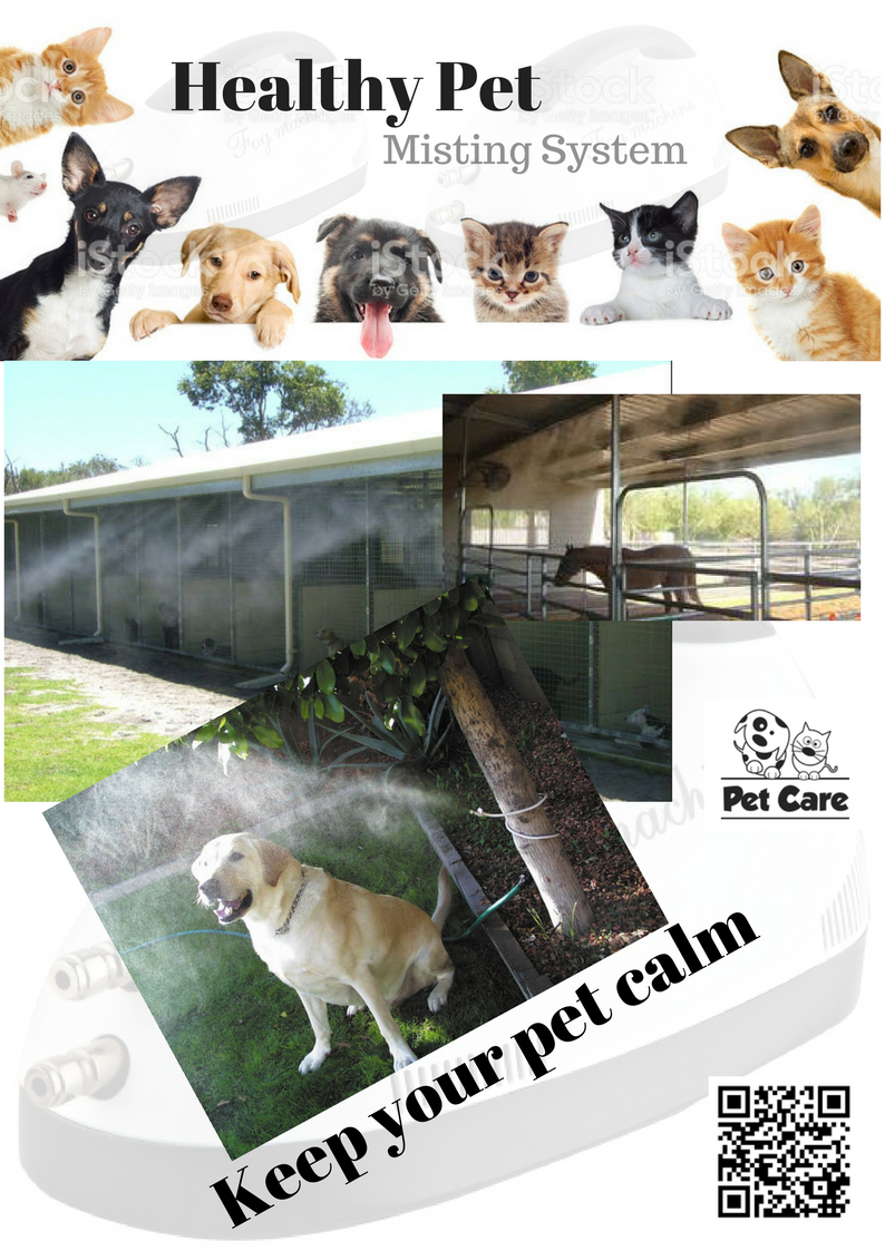 Keep your pet calm